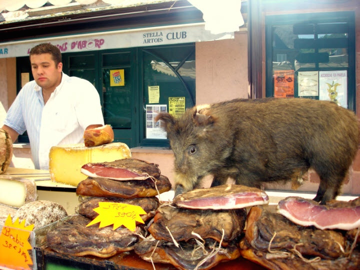 Market - boar