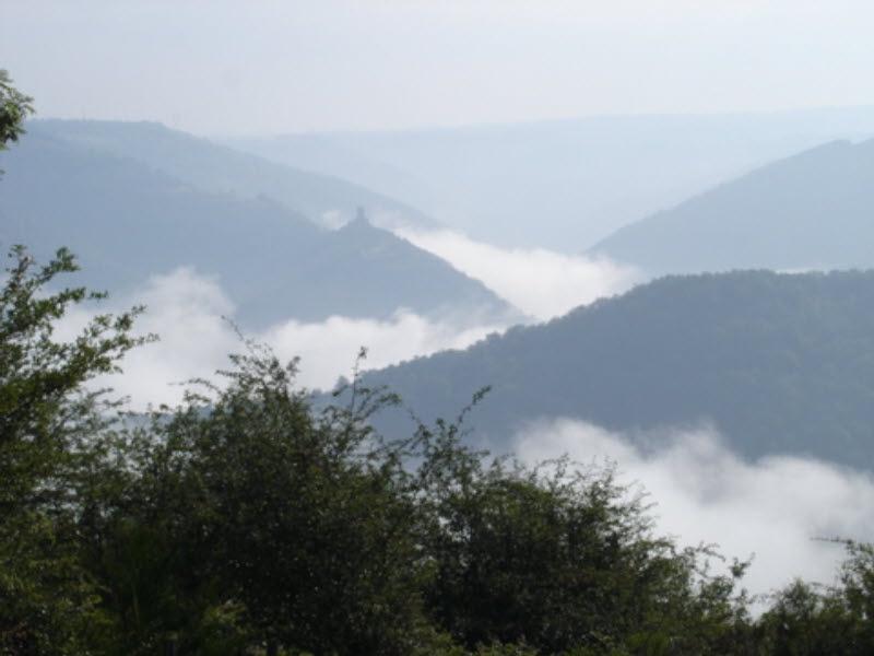 Misty view