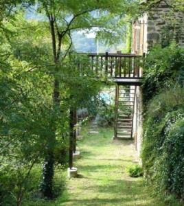 Grassed terrace